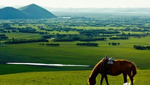 由于呼伦贝尔市大自然的景点,所以一定要选择一个最佳的时间去,什么时间呢?当然是夏季了,夏季是呼伦贝尔景色最美丽的时候,这个时间去的话,会看到蓝天白云以及美丽的呼伦贝尔湖,还有就是一望无际的大草原,草原上有成群的牛羊活跃乱跑,当然,由于呼伦贝尔气候的因素,夏季也是这里气温最温和的时候,其他季节的话,一般是比较寒冷的,还有就是夏季是这里的旅游高峰期,所以游客需要注意时间的安排上,高峰期的话,一般的东西可能会比较贵,所以游客要带足钱,再者就是要主要以好安全措施,防止身上带大量的现金。 呼伦贝尔大草原地处内蒙古