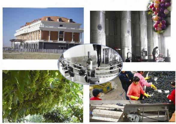 汉森庄园-国际会所 - 旅游
